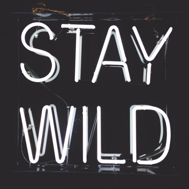 ALT Stay Wild_Mintz
