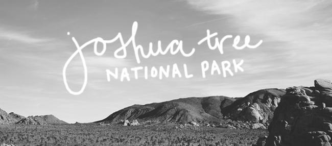 Joshua Tree Title_Mintz