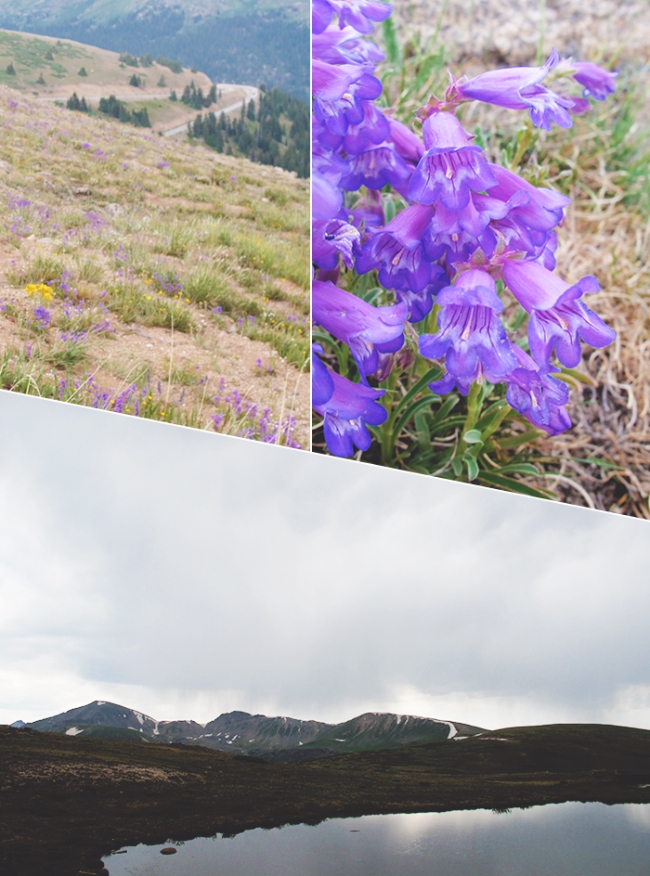 Independance Pass Collage_Mintz