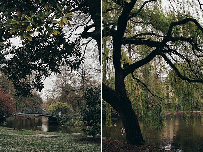 Bordeaux collage 2_Mintz