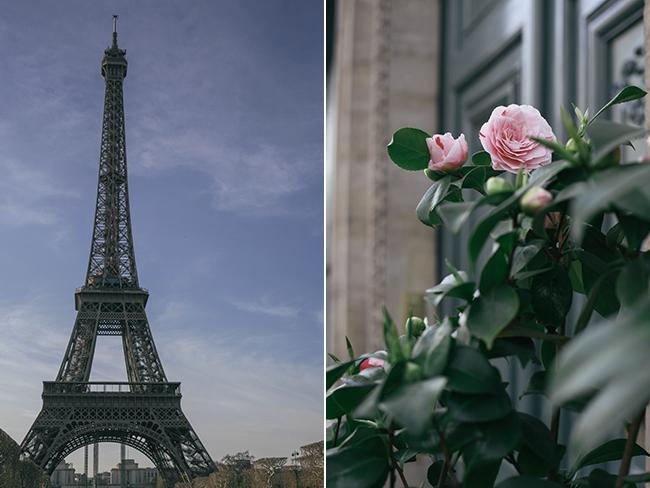 Paris collage_Effiel Tower_Needles