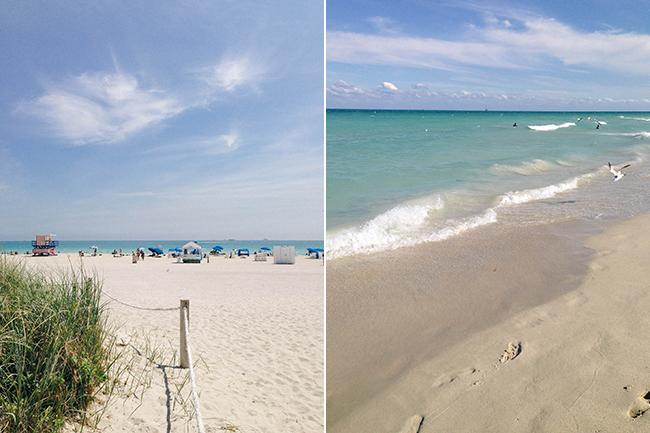 MiamiPostcard2_Needles