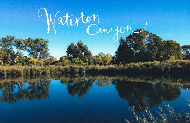 Waterton2014_Needles-6_title