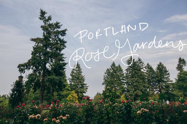 PDX-Rose-Gardens15_Needles_title