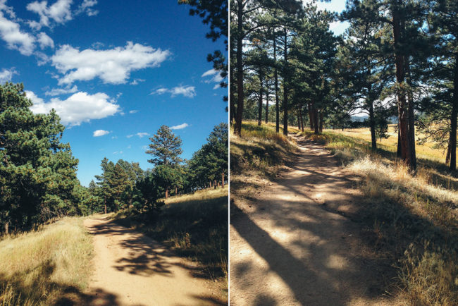 Betasso Hike Collage 2_Needles15